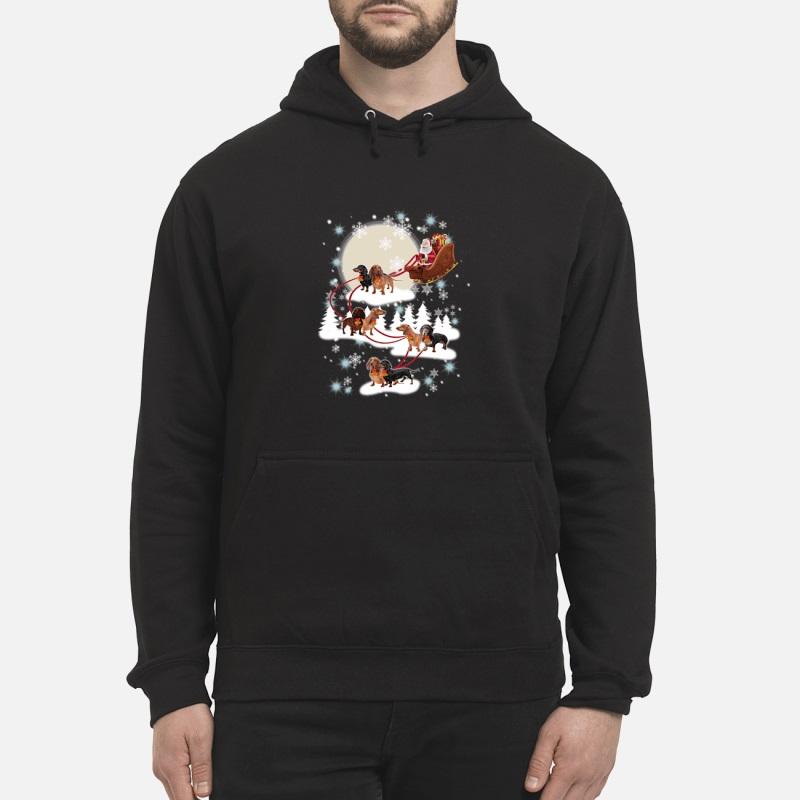 Dachshund Santa Claus's Reindeer Christmas unisex hoodie