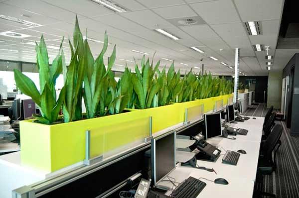 Sử dụng không gian xanh trong thiết kế